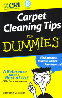 carpet cleaning tips for dummies by elizabeth goldsmith